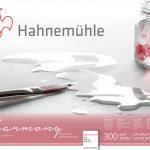 Harmony Watercolour 24x30_fino